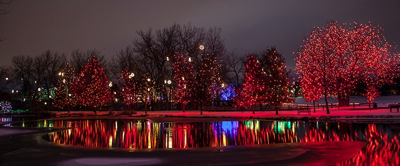 holiday light tours denver