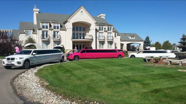 Image result for limousine in Denver CO
